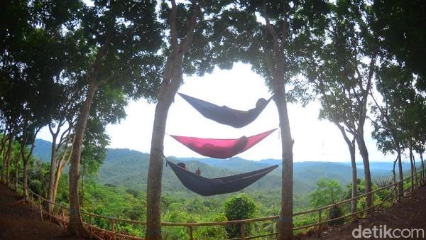 Pengunjung umumnya langsung menepi ke mulut tebing untuk berfoto dengan latar kontur gunung yang hijau dan langit pagi yang kemerahan. Ada yang bersantai di hammock juga.