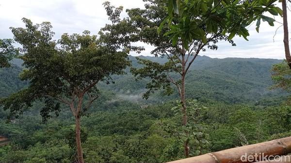 Di Pangandaran terdapat kawasan wisata bukit yang sangat menawan. Kawasan ini bernama Bukit Panenjoan. Lokasinya berada di Dusun Panenjoan, Desa Kersaratu, Kecamatan Sidamulih, Kabupaten Pangandaran.