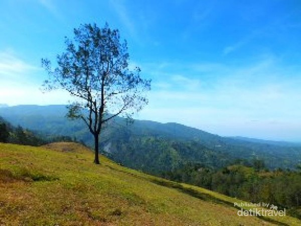 Padang Bikium
