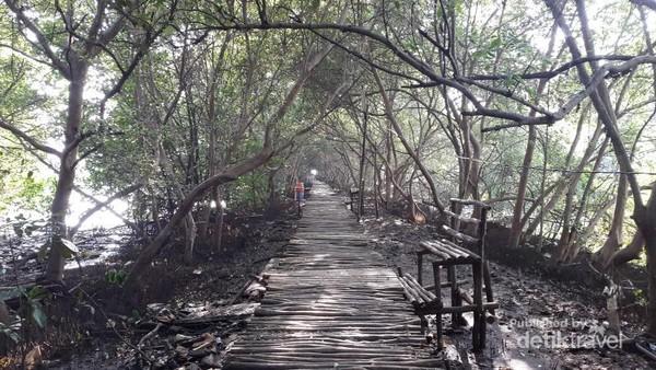 Taman Wisata Alam Mangrove Jakarta