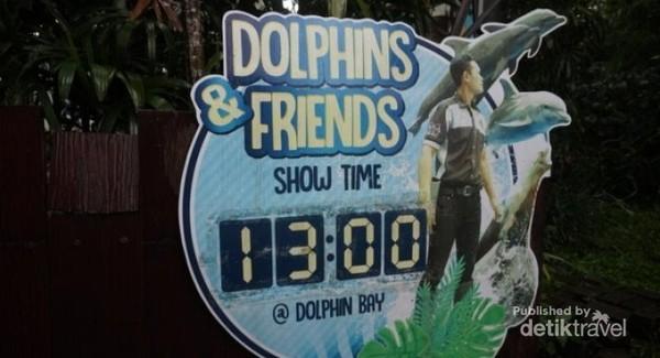 Setelah itu dilanjut dengan Dolphin  Friends pukul 13.00