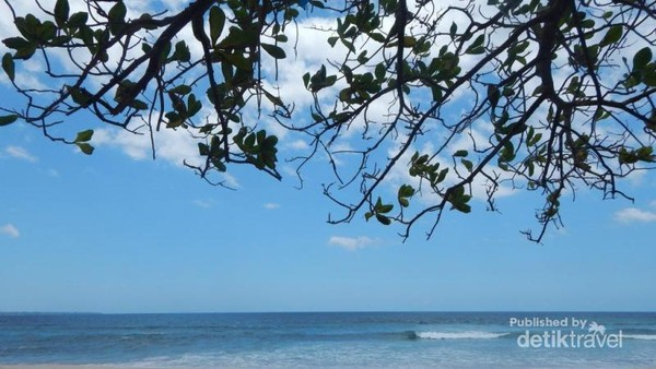 Pantai dengan pasir putih dan ombak yang tenang menjadi data tarik tersendiri. Sementara pepohonan di tepi pantai menjadi peneduh di siang hari yang terik.