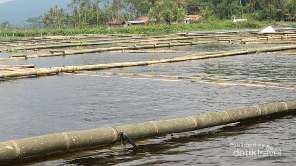 Kita bisa menjumpai keramba ikan di tengah danau Rawa Pening