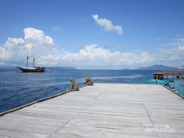 Untuk menikmati pesona bawah laut di Kampung Arborek cukup snorkeling di sekitaran dermaga.