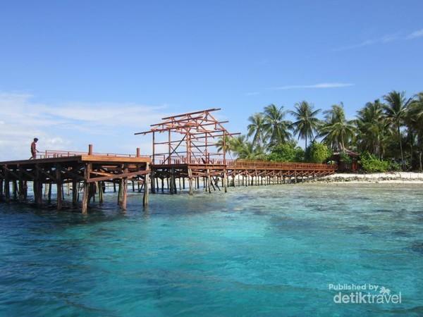 Saat sampai di Kampung Arborek, pengunjung dikejutkan dengan air yang biru bersih, berbagai jenis karang dan ikan-ikan.