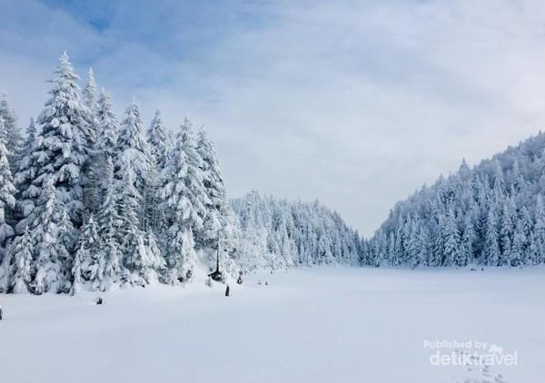 Danau Spruce yang beku di ketinggian 740 meter dpl di gunung Sutton