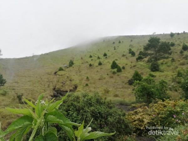 Gunung Guntur punya beberapa puncak