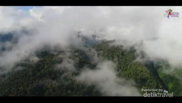 kawasan hutan di sekeliling objek wisata Lot kucak, foto Disparpora BM