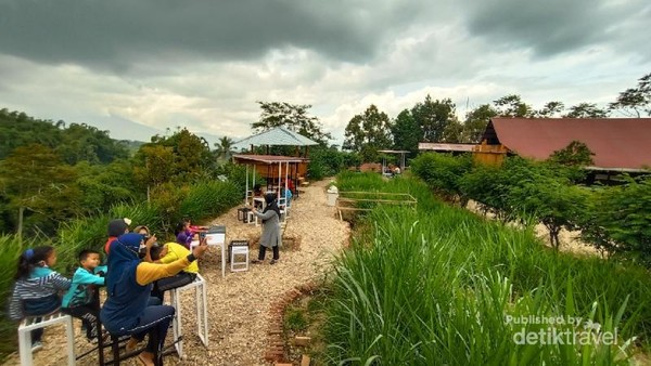 Cafe Laisy Dairy Farm yang instagramble