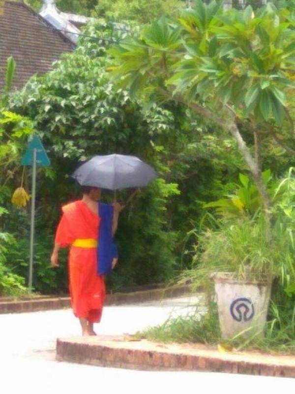 Seorang biksu berjalan menyusuri taman kota.