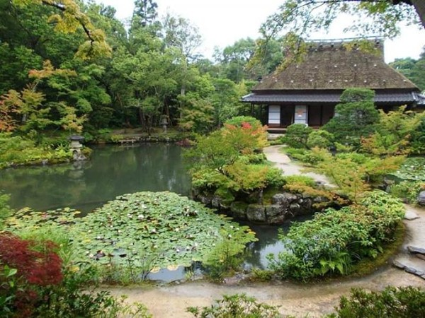 Indahnya danau di sekeliling bangunan tea house.