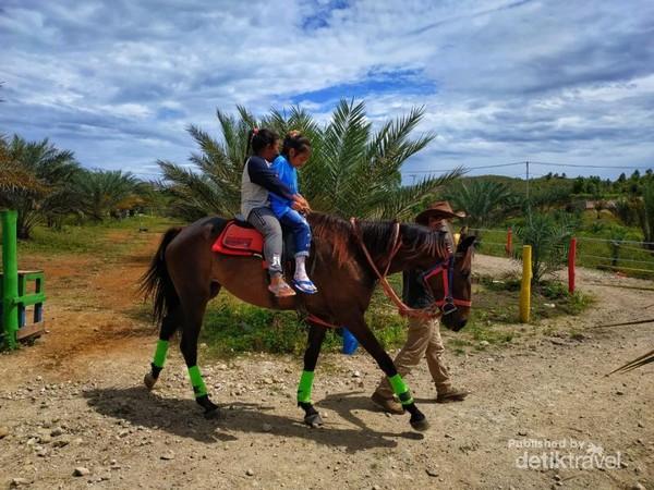 Kebun Kurma Barbate Wisata Alam Keluarga Di Aceh Besar