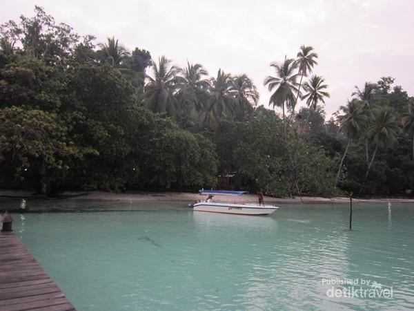 Resort berada di bawah pepohonan, konsepnya menyatu dengan alam.