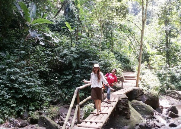 Perjalanan menuju air terjun dengan pemandangan yang hijau.  Dari Denpasar, jaraknya sekitar 1 jam naik mobil