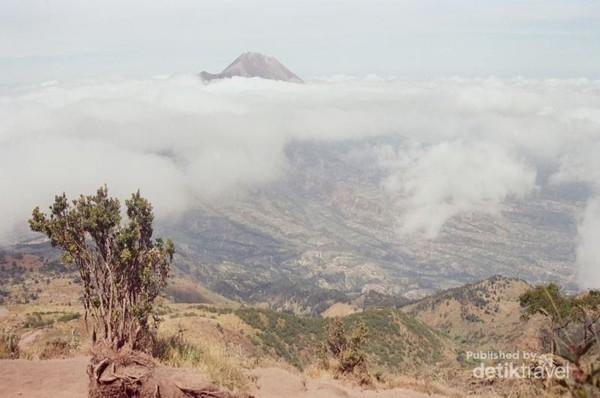 Pemandangan dari Merbabu bisa melihat Merapi