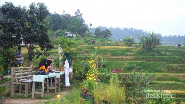 Beberapa pengunjung menikmati pemandangan alam.