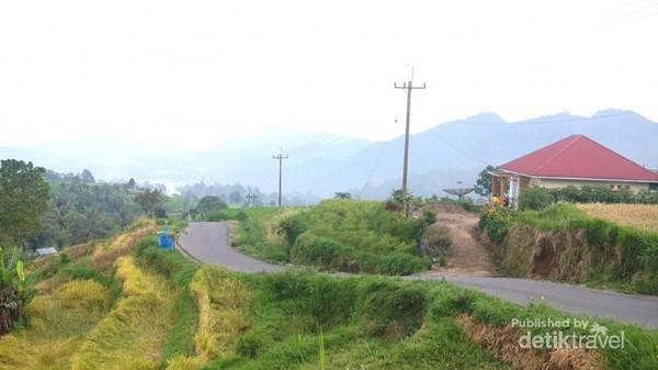 Jalan menuju desa dan rumah penduduk.