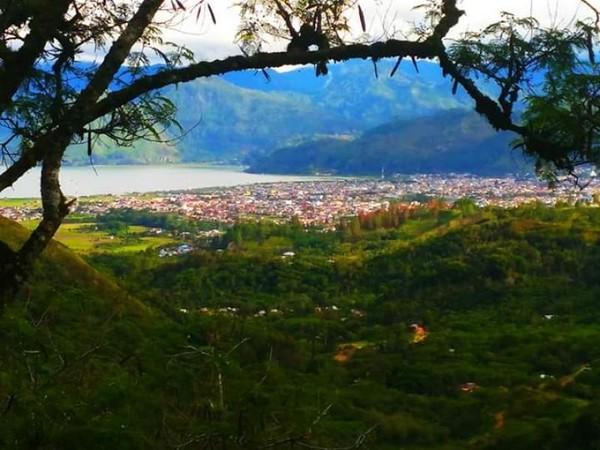 Perkebunan Kopi Gayo yang memagari Kota Takengon