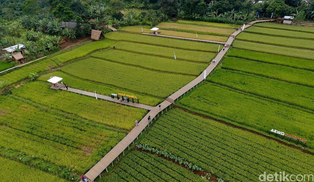 Kampung Tematik Mulyaharja