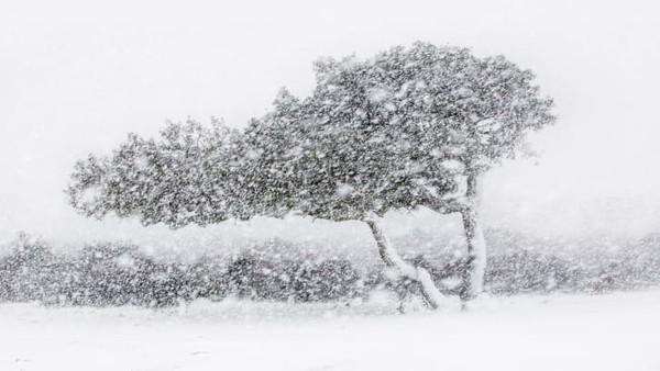 Badai salju adalah pemandangan langka di Sardinia, Italia. Fotografer Alessandro Carboni beruntung dapat memotret momen ini.