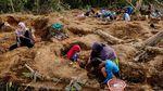 Warga Bangka Belitung Ramai-ramai Buru Batu Timah