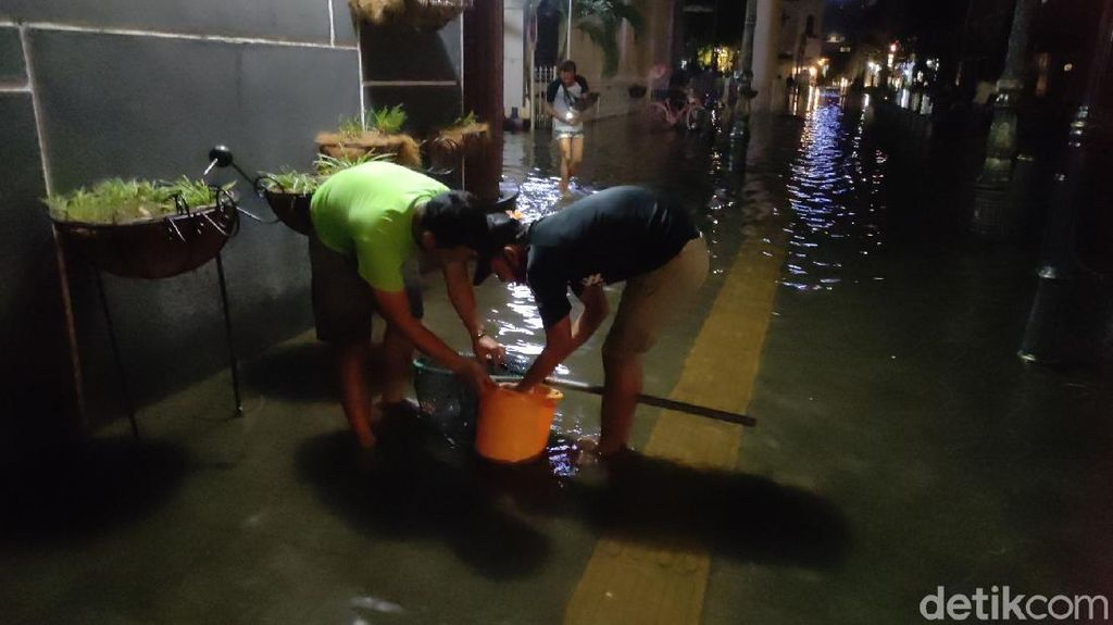 Berburu Ikan Saat Banjir di Kota Lama Semarang, Dapat Lele hingga Koi