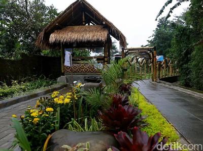 Kampung Tematik Mulyaharja, Wisata Pertanian di Kaki Gunung Salak