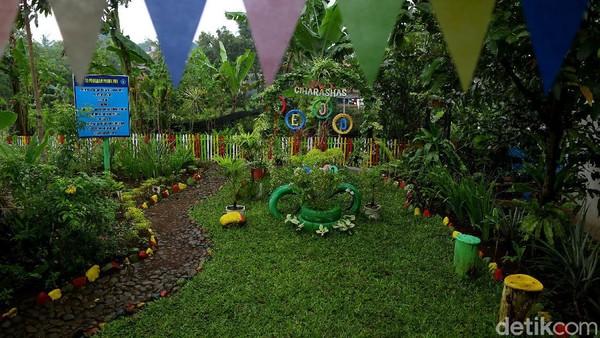 Tak hanya itu, ada juga taman herbal atau yang biasa disebut Apotik Hidup yang juga bisa menjadi inspirasi pelestarian tanaman bermanfaat untuk kehidupan kita sehari-hari.