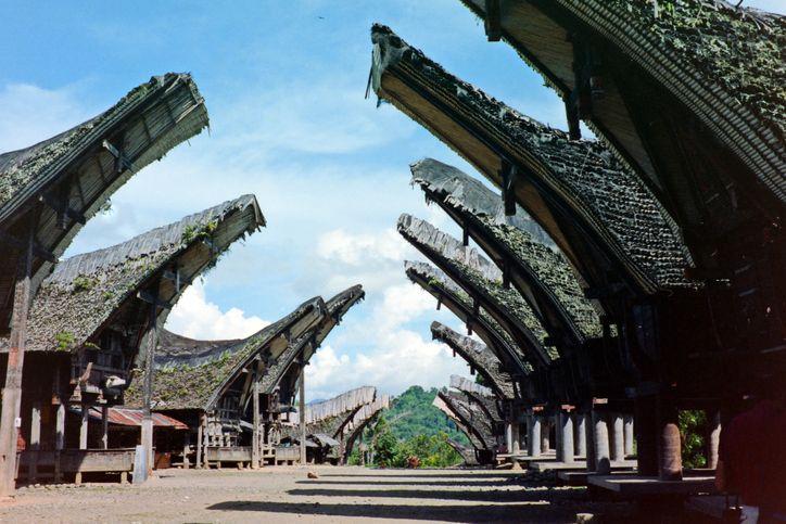 Lada Katokkon, Cabai Khas Toraja yang Pedasnya Menggigit