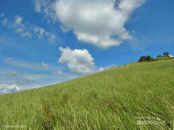 Di Bukit Rimpi, warna rumput hijau, awan putih dan biru berpadu sempurna dalam pemandangan yang indah untuk difoto.