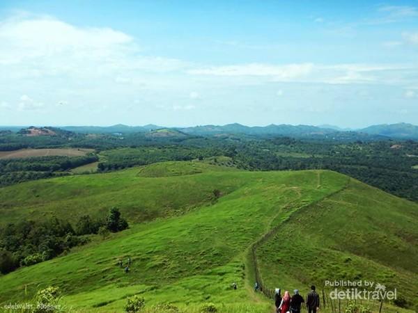Walau Bukit Rimpi merupakan padang penggembalaan sapi, tetapi tidak ada sedikitpun kotoran sapi bahkan tidak ada sapi yang berkeliaran mengganggu wisatawan.