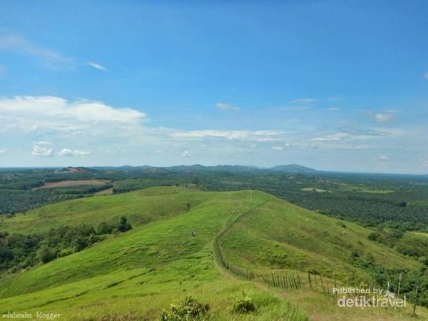 Bukit Rimpi Pelaihari adalah salah satu bukit yang memiliki savana hijau yang indah.