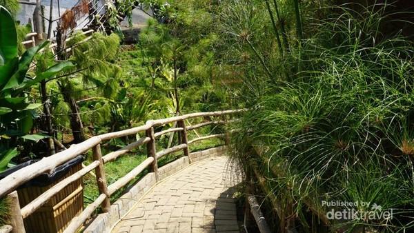 Menuruni tangga terdapat area yang dikelilingi pepohonan hijau.