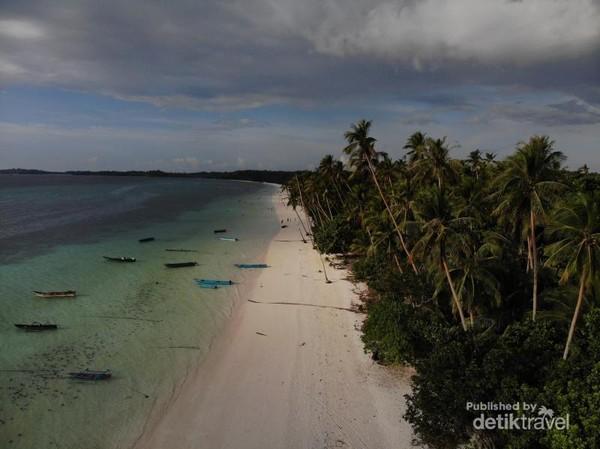 Pohon kelapa yang tinggi menghiasi pantai Ngurbloat ini. Pohon kelapa berderet sepanjang pantai