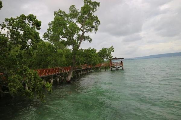 View bagian ujung Pantai Wisata Bakau Kormun