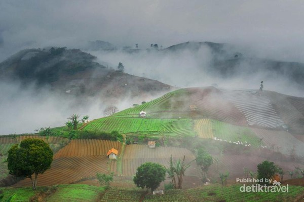 Sore hari kadang berselimut kabut