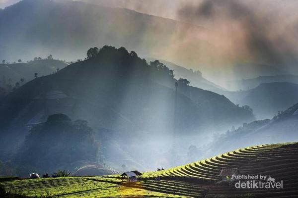 Suasana pagi hari yang berselimut kabut