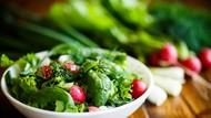 Mengenal Diet GOLO yang Bisa Turunkan Berat Badan Tanpa Rasa Lapar