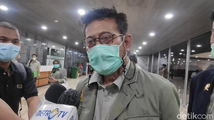 Mentan Syahrul Yasin Limpo (Matius Alfons/detikcom).