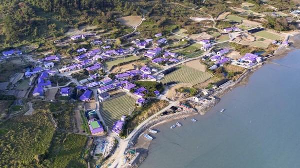 Pulau Banwol memiliki 400 bangunan yang dicat berwarna ungu. (Shinan County Office)