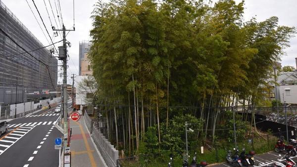 Hanya terlepas dari segala legenda itu, traveler bisa mencapainya dengan berjalan kaki dari Stasiun Moto-Yawata dari jalur Chuo-Sobu dan Toei Shinjuku (istimewa)