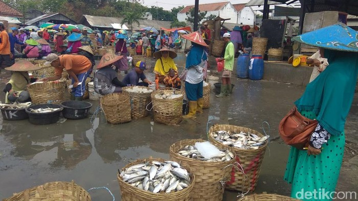 pasokan ikan turun karena banjir lamongan