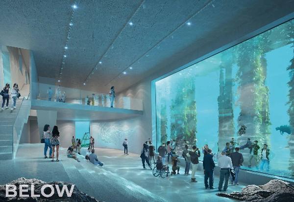 Tempat ini menyajikan pemandangan bawah laut yang menakjubkan untuk pengunjung.