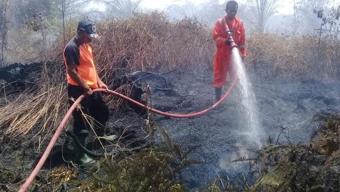 Kebakaran lahan di Agam, Sumbar (dok. Istimewa)