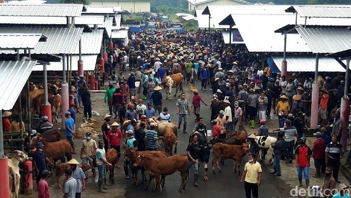 Pasar hewan Sunggingan, Boyolali, dipindahkan ke lokasi baru. Namun sayangnya lokasi baru salah satu pasar hewan terbesar di Jawa Tengah itu dirasa kurang luas.