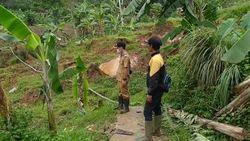 Sawah Terdampak Pergerakan Tanah, Petani Cianjur Terancam Gagal Panen