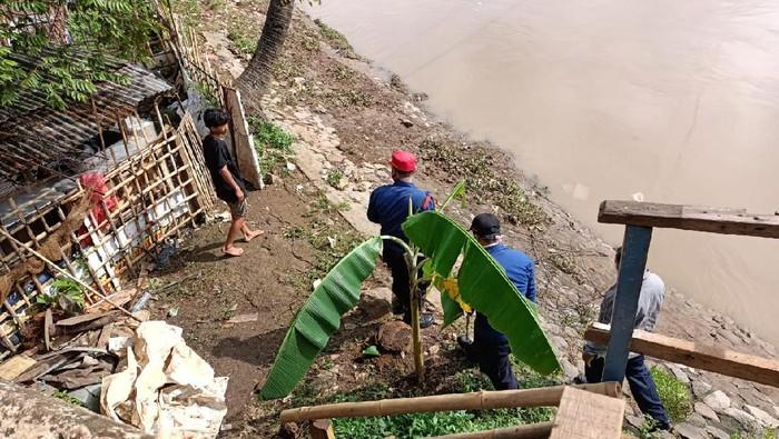 Petugas Masih Cari Ular Besar yang Muncul di Pintu Air Petamburan