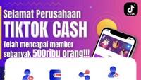 Rekrut 500 Ribu Anggota, Tiktok Cash Diduga Raup Rp 150 M