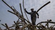Geliat Kebun Tebu di Pedesaan Terpencil India