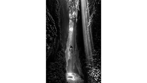 Diana Fernie dari Australia memenangkan kategori Hitam Putih dengan foto berjudul the cut. Foto ini diambil selama perjalanan menyelam di Kepulauan Solomon.